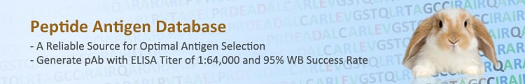 Peptide Antigen Database