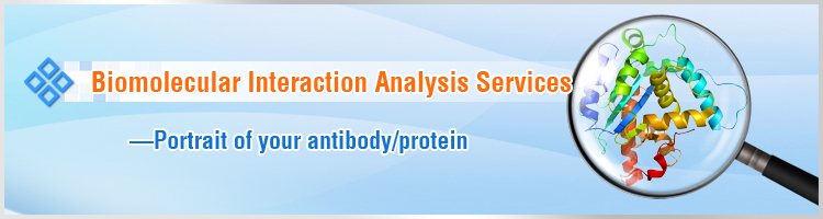 Biomolecular Interaction Analysis Services