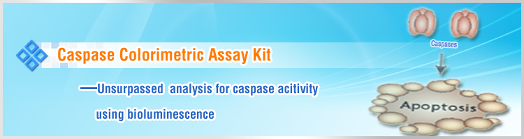 Caspase Colorimetric Assay Kits