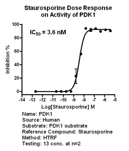 PDK1 assay setup