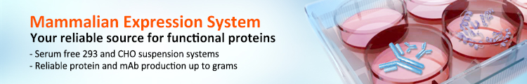 Protein Expression & Purification in Mammalian System