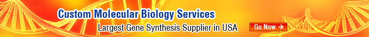 molecular biology services