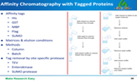 Protein purification strategies overview