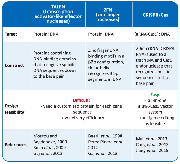 advantages of CRISPR gene editing