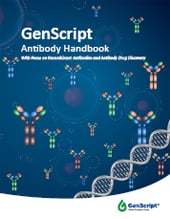 Antibody handbook free PDF download