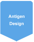 Antigen Design for Polyclonal Antibody Production