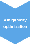 Antigenicity Optimization for Polyclonal Antibody Production