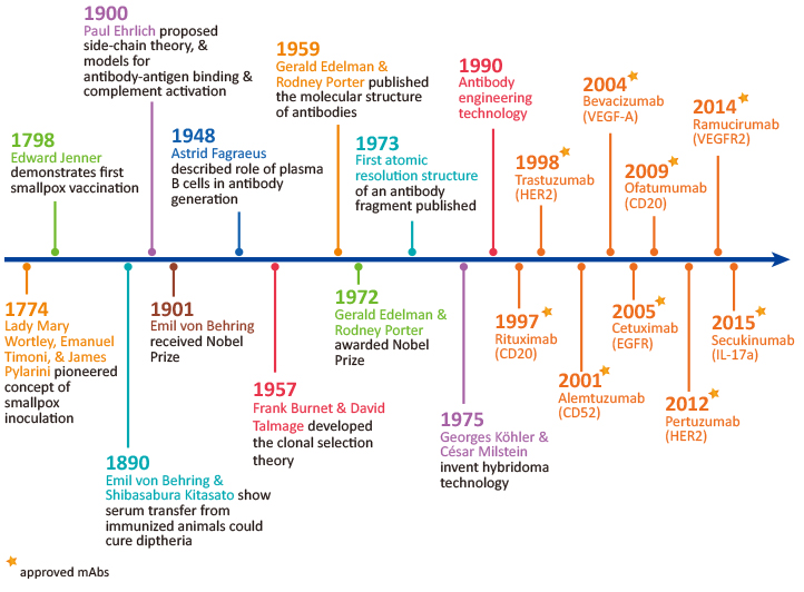 The History of Antibodies