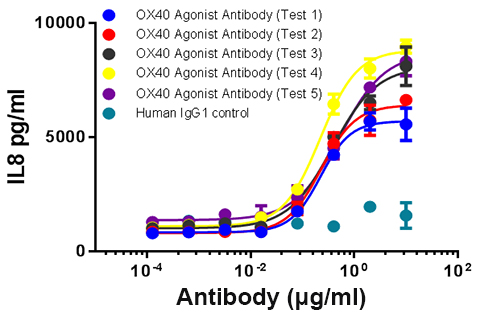 The concentration dependent response of OX40L on OX40