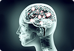 Can Alzheimer's pathology be transmitted from human to human