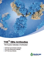 The Elite Antibodies