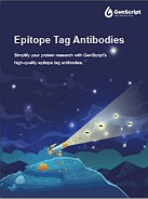 Epitope Tag Antibodies Flyer