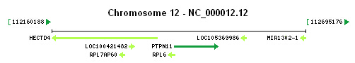 PTPN11 gene Genomic context