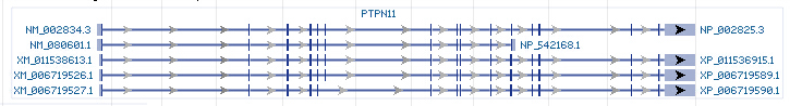 PTPN11 gene Genomic sequence