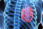 heart attack therapy, cardiac regeneration