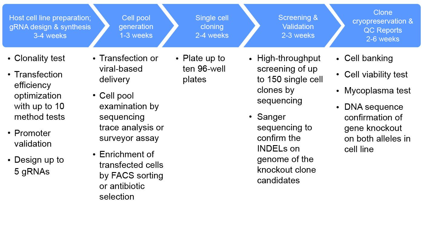 CRISPR gene Editing Services-Genscript