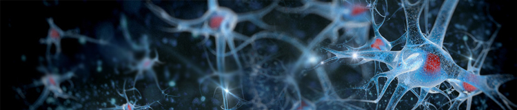 Neuroscience Research Applications for Gene Synthesis