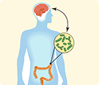 gut microbes and mental health