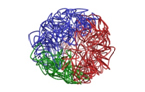 3D mapping the human genome: 1000s of new disease switches revealed
