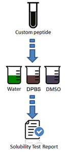 Solubility Testing Process and Deliverables
