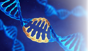 Novel Applications of CRISPR/Cas9 Genome Editing Technology
