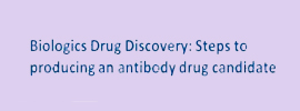Biologics Drug Discovery: Steps to Achieving an Antibody Drug Candidate