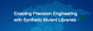Enabling Precision Engineering with Synthetic Mutant Libraries