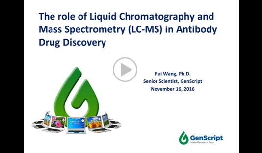 The role of LC-MS in antibody drug discovery