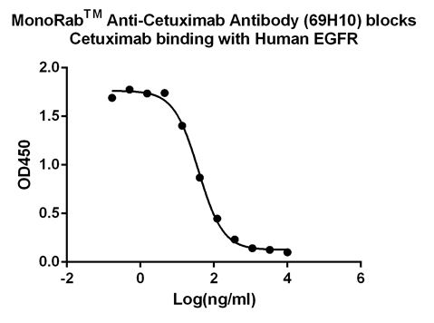 MonoRabᵀᴹ Anti-Cetuximab Antibody (69H10), MAb, Rabbit