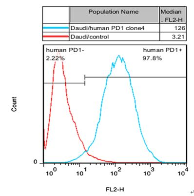 Daudi/PD1 Stable Cell Line