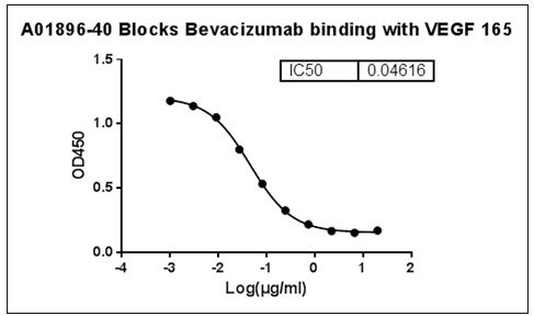 MonoRabᵀᴹ Anti-Bevacizumab Antibody (46E3)[Biotin], MAb, Rabbit