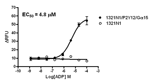1321N1/P2Y12/Gα15 Stable Cell Line