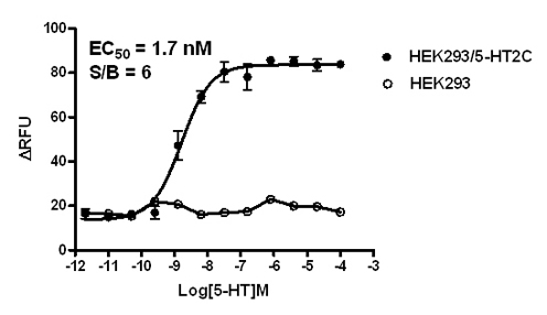HEK293/5-HT2C Stable Cell Line