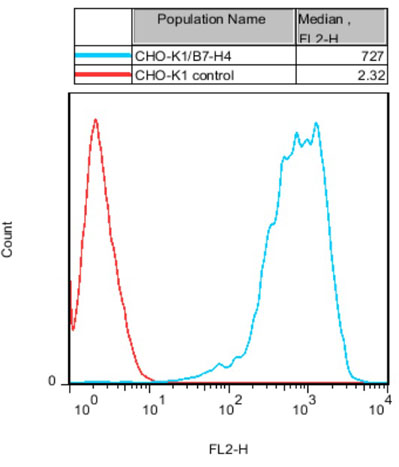 CHO-K1/B7-H4 Stable Cell Line