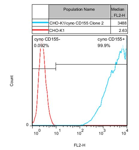 CHO-K1/cyno CD155 Stable Cell Line